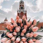 Букет тюльпанов пресет