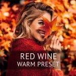 Красное вино — пресет